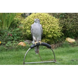 High ring perch, adjustable height